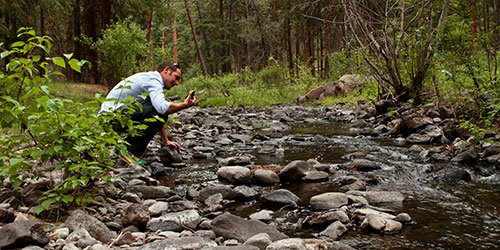 Improving flows in McKay Creek