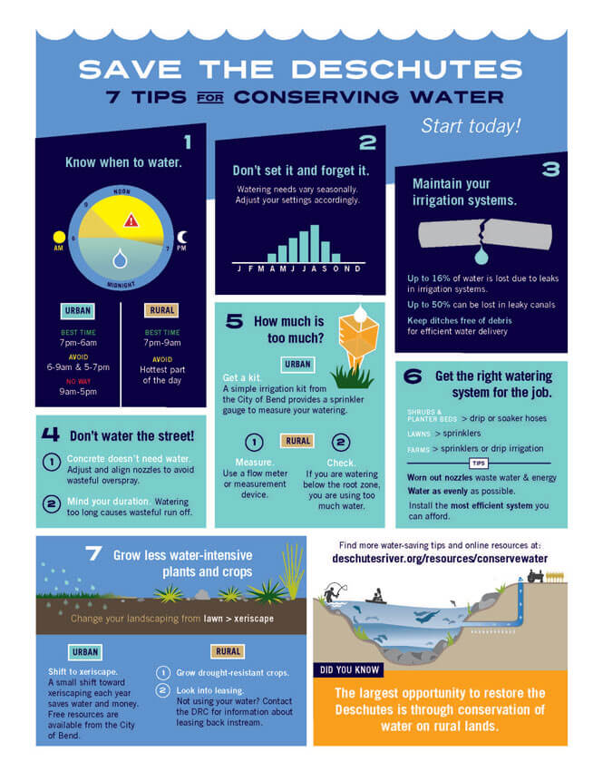 7-Tips-to-conserve-water.jpg
